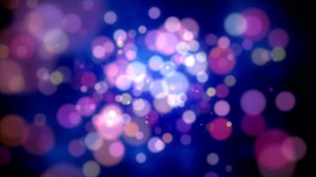 spots fly video