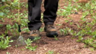 Spraying Weeds 1 video