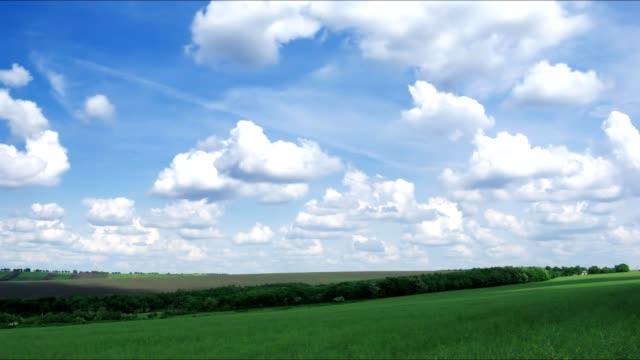 spring field video