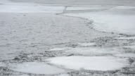 Spring ice drift with melting floes video