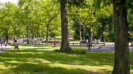Spring in Central Park video