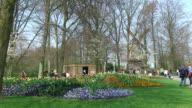 Spring in park video
