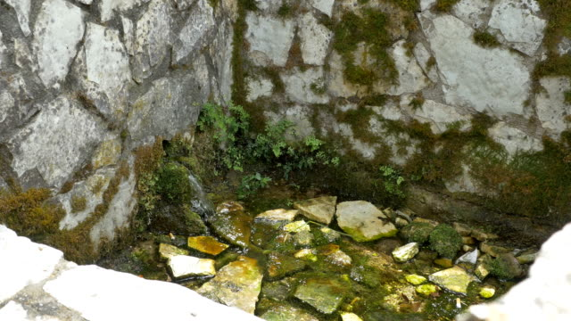 Spring in Stone Wall video