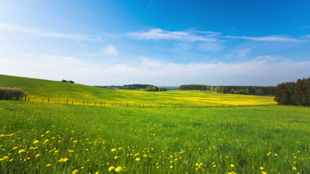 TIME LAPE: Spring Landscape video