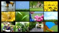 Spring season, video montage video