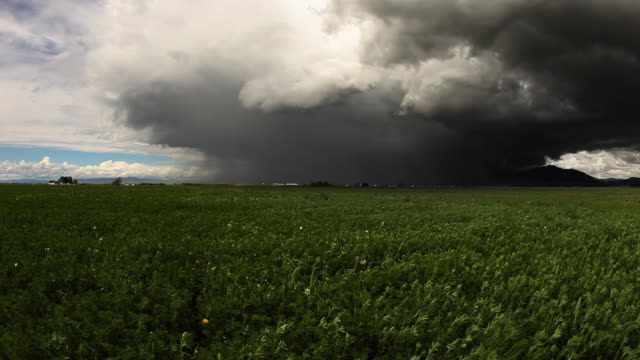 Spring Thunder storm with farm video