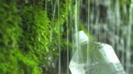 Spring water to the PET bottle video