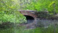 Springtime in Boston video