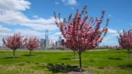 Springtime in New York City video