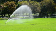 Sprinkler spray Water over Green Sunny Fields video