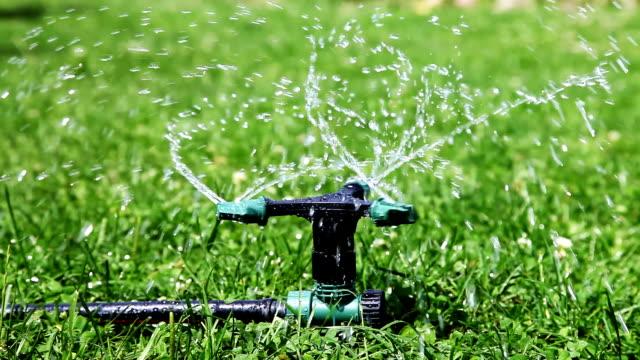 Sprinkler video