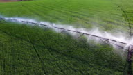 Sprinkler Watering Field video