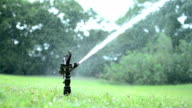 sprinkler watering lawn video