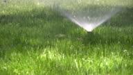Sprinklers. Agricultural Sprinkler spraying water on back yard green grass. video