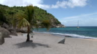 St Barth, amazing beach and palm trees video