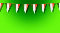 St. Patrick's animated flag background video