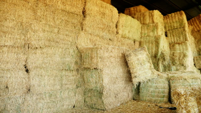 Stacked bales in the barn overall plan video