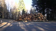 DS Stacked wood logs video