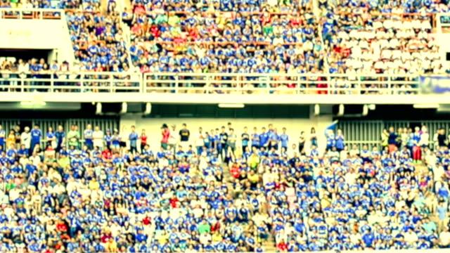 HD Stadium Crowd Doing Wave video