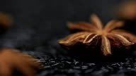 Star Anise spice black background video