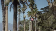 Stars and Stripes Flying Among Palm Trees video