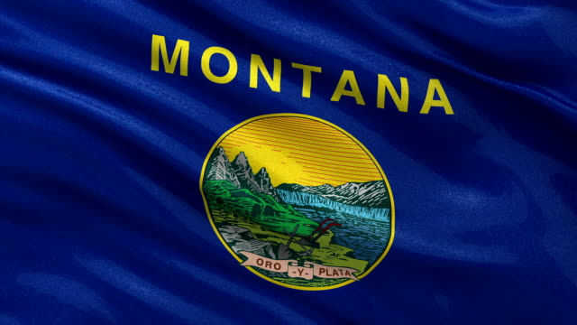 US state flag of Montana - seamless loop video