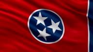 US state flag of Tennessee - seamless loop video