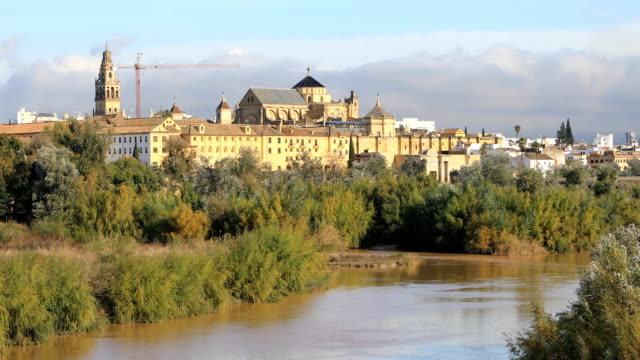 Static view from San Rafael bridge on Cordoba cathedral video