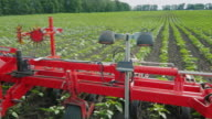 Steadicam shot: Agricultural machinery for weeding fields. His tractor pulls video