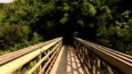 Steadicam Shot Walking On Bridge Slow Motion video