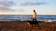Steadicam slow motion shot: Young woman walking with his beloved dog along the bank of the lake video