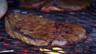 SLOW MOTION: Steak and Fire video