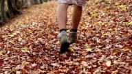 Steps through Autumn Leaves on Trail video