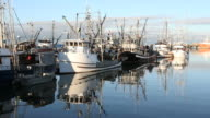 Steveston Fishing Fleet at Dock video