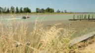 Steveston Harbor Low Tide video