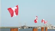 Steveston HarborCanada Day Flags video
