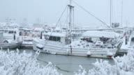 Steveston Marina, Fresh Snow video