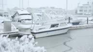 Steveston Marina, Winter Snow video