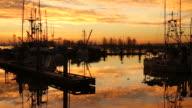 Steveston Morning, Fishermans Wharf video