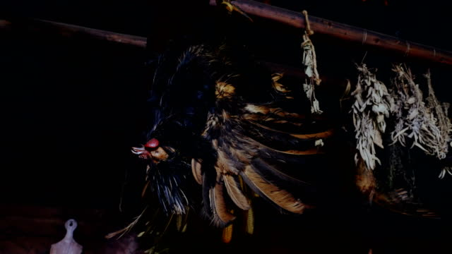 Still Life: Rooster Hanging Upside Down video