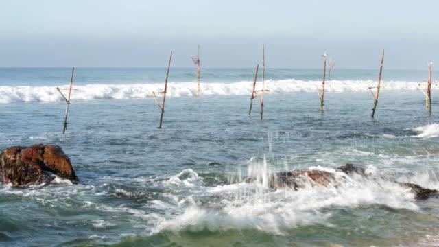 Stilt fishing sticks in Sri Lanka video