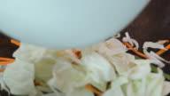 Stir-fried vegetable on teppanyaki pan. Front view. video