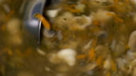 Stirring meatless soup of ladle video