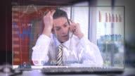 Stock market meown video