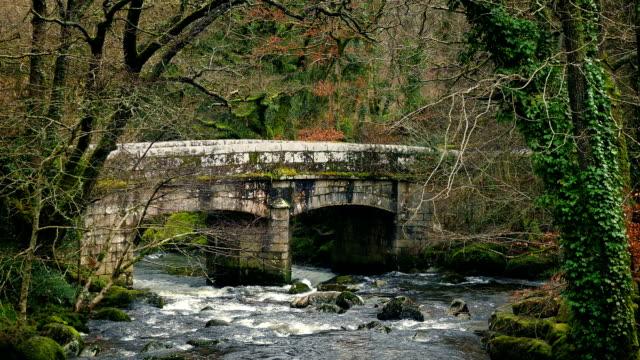 Stone Bridge In Wild Countryside video