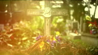 Stone cross in old cementery video