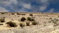 Stone desert (typical arid landscape), Jordan, Middle East video