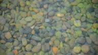 Stone rock in water video