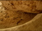 Stone Wheel Crushing Olives video