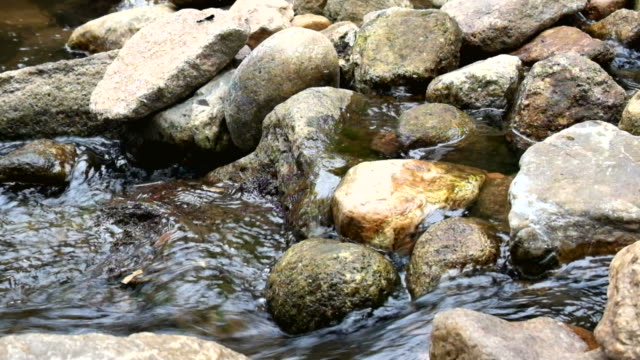 Stones with water flowing in the river video